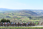 The peloton roll through the Tuscan hills during Stage 3 of the 2017 Tirreno Adriatico running 204km from Monterotondo Marittimo to Montalto di Castro, Italy. 10th March 2017.<br /> Picture: La Presse/Fabio Ferrari | Cyclefile<br /> <br /> <br /> All photos usage must carry mandatory copyright credit (&copy; Cyclefile | La Presse)