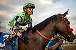 JAN 11: Rueben Fuentes hugs Queen Bee To You after winning the La Canada Stakes at Santa Anita Park in Arcadia, California on January 11, 2020. Evers/Eclipse Sportswire/CSM