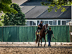 JUNE 06: Spinoff prepares for The Belmont Stakes at Belmont Park in Elmont, New York on June 06, 2019. Evers/Eclipse Sportswire/CSM