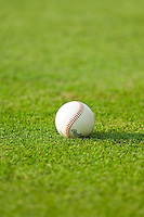 A baseball sits in the grass behind home plate during the South Atlantic League game between the Hickory Crawdads and the Kannapolis Intimidators at CMC-Northeast Stadium on July 28, 2013 in Kannapolis, North Carolina.  The Crawdads defeated the Intimidators 6-1.  (Brian Westerholt/Four Seam Images)