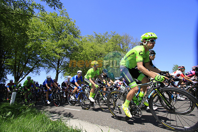 The peloton, including Rigoberto Uran (COL) Cannondale, in action during Stage 3 of the 2016 Giro d'Italia running 190km from Nijmegen to Arnhem, The Nethrerlands. 8th May 2016.<br /> Picture: Eoin Clarke | Newsfile<br /> <br /> <br /> All photos usage must carry mandatory copyright credit (&copy; Newsfile | Eoin Clarke)