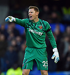 West Ham United goalkeeper David Martin during the Premier League match at Stamford Bridge, London. Picture date: 30th November 2019. Picture credit should read: Robin Parker/Sportimage