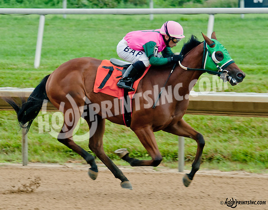 Barracuda Wayne winning at Delaware Park on 7/8/13