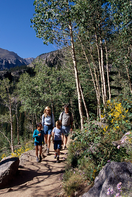 A family of four hiking a mountain trail beneath summer aspen in Rocky Mtn Nat'l Park, CO