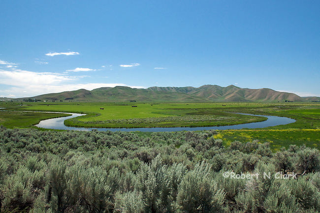 Oxbows on lower Silver Creek near Picabo, Idaho