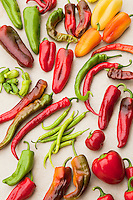 Variety of colorful peppers, Viridian Farms, oregon