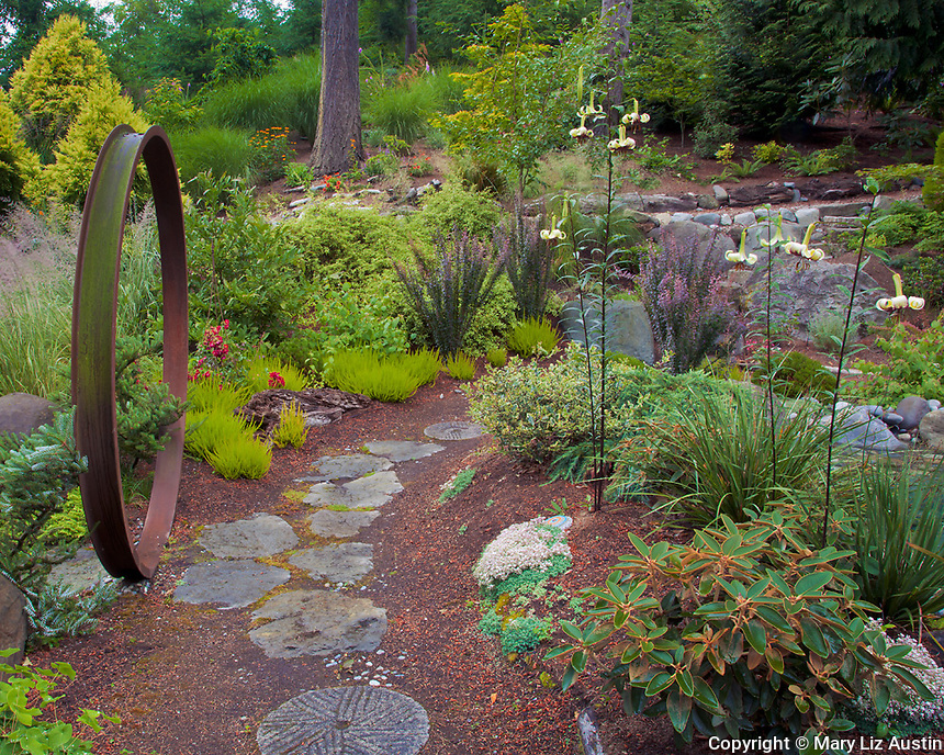 Vashon-Maury Island, WA<br /> Circular iron gate and stone pathway winds through woodland perennial garden featuring flowering lilies  (Lilium majoense), rhododendrons, ferns, and barberries.