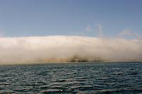 Fog rolling off shore