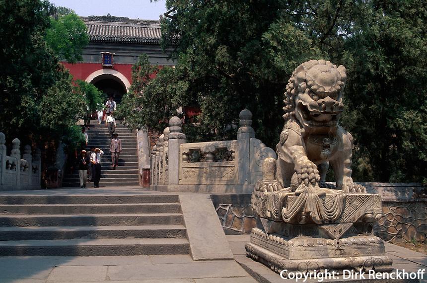 China, Peking, Bi Yun Si (Tempel), Löwe am Eingang