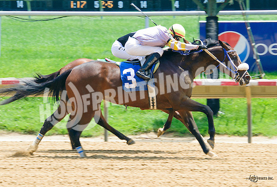 Avery's Parade winning at Delaware Park on 6/9/16