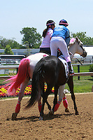 Race 4 - Ladies Legend Race for the Cure won by Class Rules & Jennifer Rowland Small at 6 furlongs, 3-year old & up.  Trainer Vernon Allinson. Owner Blind Squirrel Racing