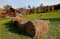 Giant rolls of harvested hay line a field in Butler Tennessee, near Watauga Lake.