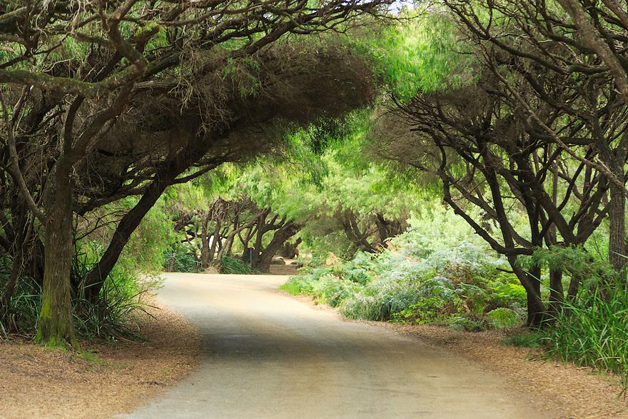 West Cape Howe. Western Australia.