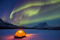 Yellow glowing tent with the aurora borealis overhead in Alaska's Brooks Range.