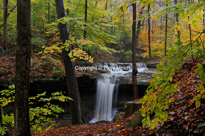 Blue Hen Falls<br />