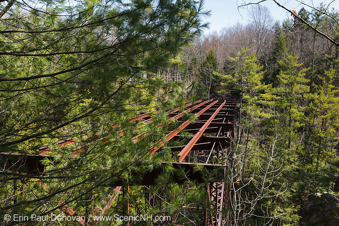 "Remnants of the ""Pumpkin Seed Bridge"" at Livermore Falls in Campton, New Hampshire USA. This bridge was erected in 1886 by the Berlin Iron Bridge Company and crossed the Pemigewasset River. It is 263 feet long and closed 1959"