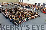 I T Tralee Graduation ceremony on Friday