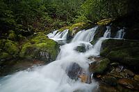 Spring cascade, Rocky Fork