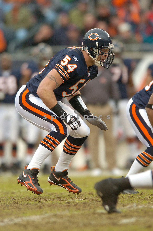BRIAN URLACHER, of the Chicago Bears, during their game  against the Tampa Bay Buccaneers on December 17, 2006 in Chicago, IL...Bears wins 34-31...DAVID DUROCHIK / SPORTPICS
