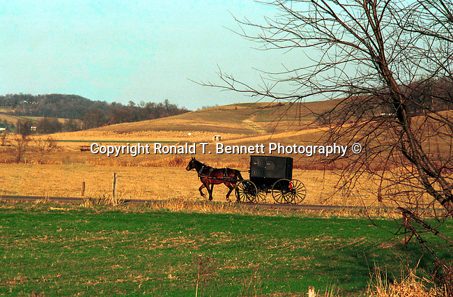 Horse and Buggy Amish family Commonwealth of Pennsylvania, Keystone state, Thirteen Colonies, Constitution, Pennsylvania, USA, Fine art and stock photography by Ronald T. Bennett Photography ©, RonBennettPhotography.com, RonBennettPhotography.net, Pennsylvania USA, Commonwealth of Pennsylvania, Keystone state, Thirteen Colonies, Fine Art Photography by Ron Bennett, Fine Art, Fine Art photography, Art Photography, Copyright RonBennettPhotography.com © Fine Art Photography by Ron Bennett, Fine Art, Fine Art photography, Art Photography, Copyright RonBennettPhotography.com ©