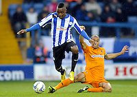 Sheffield Wednesday v Wolverhampton Wanderers 19.1.13