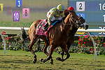 DEL MAR, CA  SEPTEMBER 2:  #8 Ride a Comet, ridden by Drayden Van Dyke, takes on #3 River Boyne, ridden by Flavien Prat,in the stretch of the Del Mar Derby (Grade ll) on September 2, 2018 at Del Mar Thoroughbred Club in Del Mar, CA.(Photo by Casey Phillips/Eclipse Sportswire/Getty ImagesGetty Images