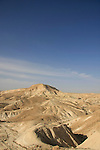 Israel, Negev. A view of Avdat plain and Wadi Zin