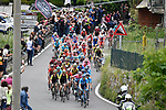 The peloton leave Bellagio and head for the Madonna del Ghisallo during Stage 15 of the 2019 Giro d'Italia, running 232km from Ivrea to Como, Italy. 26th May 2019<br /> Picture: Fabio Ferrari/LaPresse | Cyclefile<br /> <br /> All photos usage must carry mandatory copyright credit (© Cyclefile | Fabio Ferrari/LaPresse)