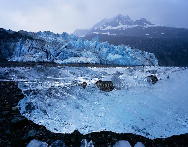 Lamplugh Glacier,  Glacier Bay NP  ALASKA