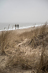 Hammonassaet State Beach Park, Madison, CT. Couple walking with dogs.