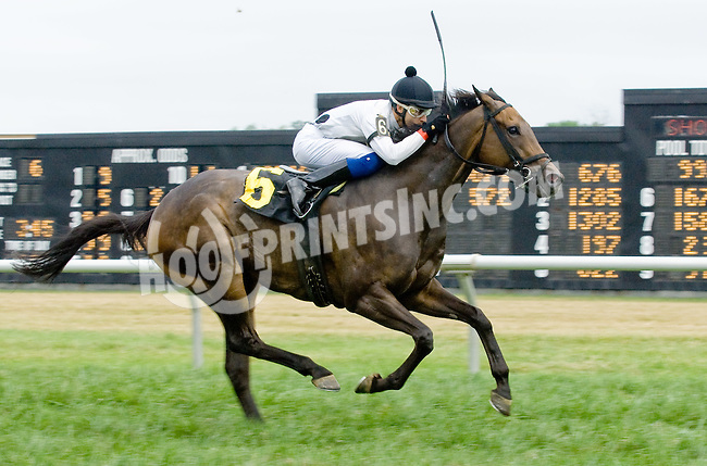 Inauguration winning at Delaware Park on 7/21/12