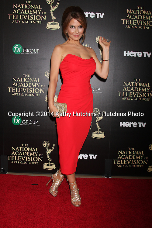 LOS ANGELES - JUN 22:  Lisa LoCicero at the 2014 Daytime Emmy Awards Arrivals at the Beverly Hilton Hotel on June 22, 2014 in Beverly Hills, CA
