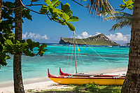 A brightly colored outrigger canoe framed by trees at Waimanalo Beach in Windward O'ahu. In the distance, residents and tourists alike explore the reef of Waimanalo Bay, with Rabbit Island beyond.