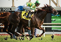 ARLINGTON HEIGHTS, IL - AUGUST 11: #4, Carrick, the 3 year old chestnut colt by the late Giant's Causeway, Jockey John Velazquez aboard for Trainer Thomas Morley, wins the $400,000 Grade I Secretariat Stakes for Donegal Racing and Jerry Crawford at Arlington Park on August 11, 2018 in Arlington Heights, Illinois. (Photo by Carson Dennis/Eclipse Sportswire/Getty Images)