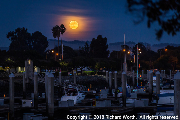 The first of January 2018's two super moons rises over the distant East Bay Hills and the near San Leandro Marina on New Year's Day.  The Full Wolf Moon.