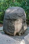 Monument 4, the Old Warrior, from the Olmec ruins of La Venta. Preclassic Period (700-400 B.C.).  La Venta Museum, Villahermosa, Mexico.