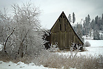 Idaho, North, Panhandle, Silver Valley, Cataldo. An old barn in winter.