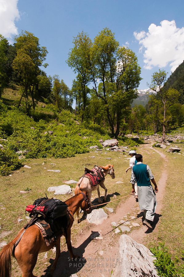 Female traveler with horse and guide walking along the Kanka River, Indian Himalaya, Kashmir, India