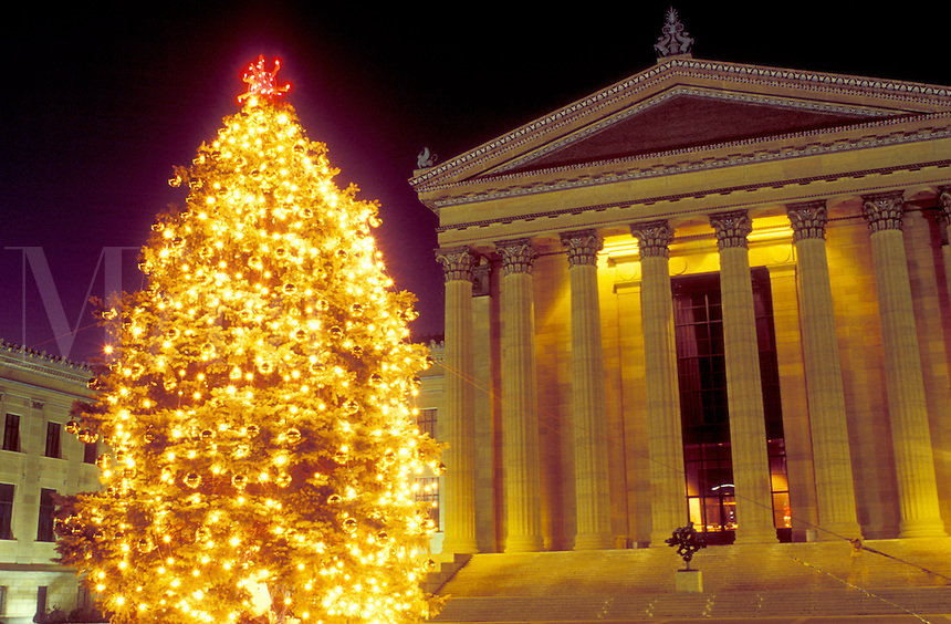 art museum, Philadelphia, Pennsylvania, PA, Christmas tree illuminated at night outside the Philadelphia Museum of Art in downtown Philadelphia.