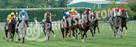 Aquitaine winning at Delaware Park on 7/31/10