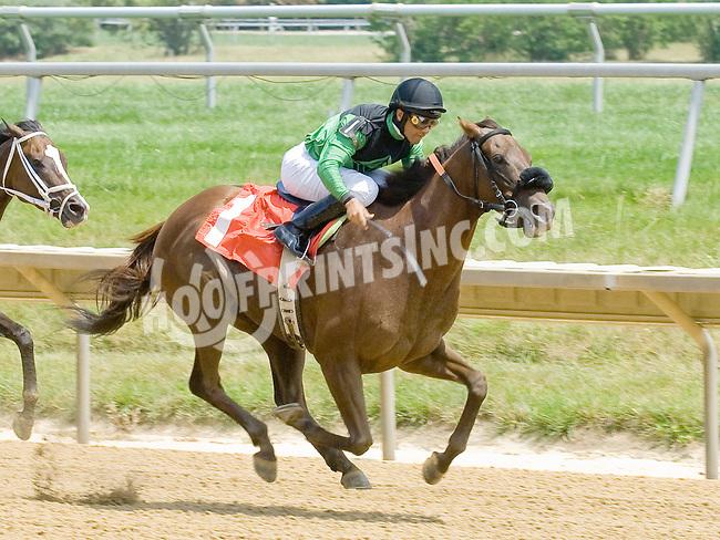 Rich Hero winning at Delaware Park on 7/5/12