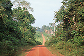Juruena, Mato Grosso, Brazil. Dirt road cutting through the Amazon rainforest.