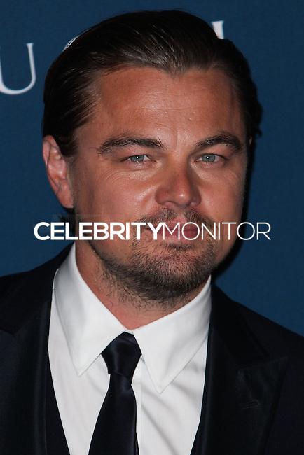LOS ANGELES, CA - NOVEMBER 02: Leonardo DiCaprio at LACMA 2013 Art + Film Gala held at LACMA on November 2, 2013 in Los Angeles, California. (Photo by Xavier Collin/Celebrity Monitor)