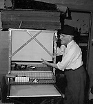 Pittsburgh PA:  Brady Stewart waiting for black and white prints to come out of the Pako print dryer - 1959.  After prints were developed and washed, you dipped the prints into a solution that protects the print from the heat and also gives it a high gloss appearance.
