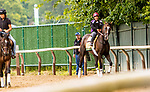 JUNE 05, 2019 : Everfast morning workouts for Belmont Stakes contenders at Belmont Park, on June 5, 2019 in Elmont, NY.  Sue Kawczynski_ESW_CSM