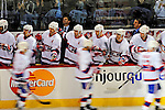 15 November 2008:  Members of the Montreal Canadiens on the bench celebrate a goal with teammates skating by in the third period at the Bell Centre in Montreal, Quebec, Canada. The Canadiens, celebrating their 100th season, fell to the visiting Flyers 2-1. ***Editorial Sales Only***..Mandatory Photo Credit: Ed Wolfstein Photo *** Editorial Sales through Icon Sports Media *** www.iconsportsmedia.com