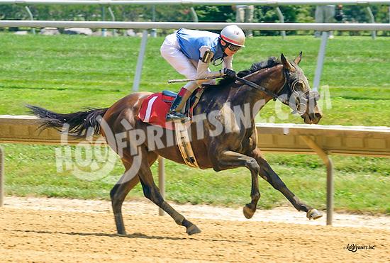 Tempietto winning at Delaware Park on 7/18/16