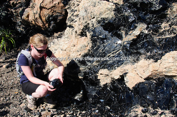 Formed of cooled magma, a tramper inspects the seams on obsidian on the volcanic island of Mayor Island / Tuhua in the Bay of Plenty