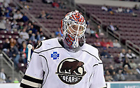 HERSHEY, PA - NOVEMBER 28: Hershey Bears goalie Ilya Samsonov (1) skates to the corner during a stoppage in play during the Wilkes-Barre/Scranton Penguins at Hershey Bears on November 28, 2018 at the Giant Center in Hershey, PA. (Photo by Randy Litzinger/Icon Sportswire)