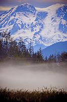 Mt. Rainier through the fog